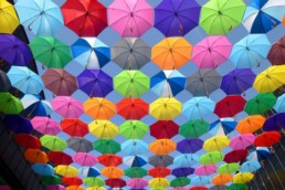 An image of colourful umbrellas